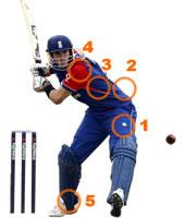 cricket injuries statistics