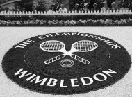From Murray Mound to Tennis Elbow…PhysioRoom does Wimbledon
