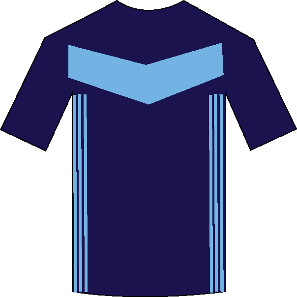 Middlesbrough away shirt