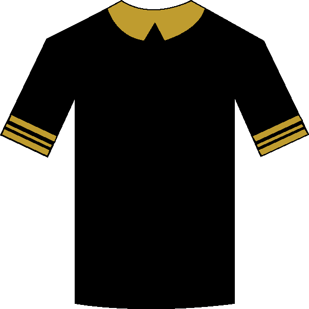 Tottenham Hotspur away shirt