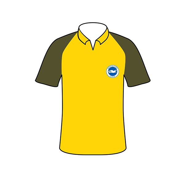 Brighton and Hove Albion away shirt