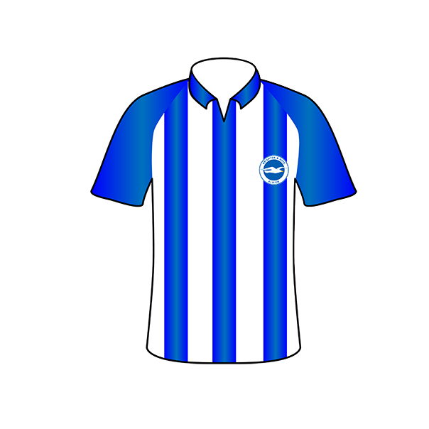 Brighton and Hove Albion home shirt